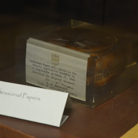 "A hamburger in a cube of lucite, labelled ""Sessional Papers"""